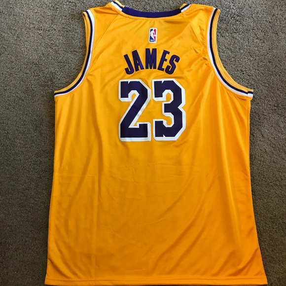best sneakers 3fc2b 32ece LeBron James Los Angeles Lakers Jersey NWT